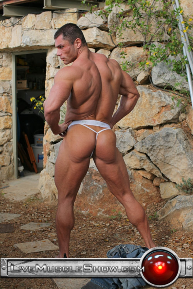 big muscle man