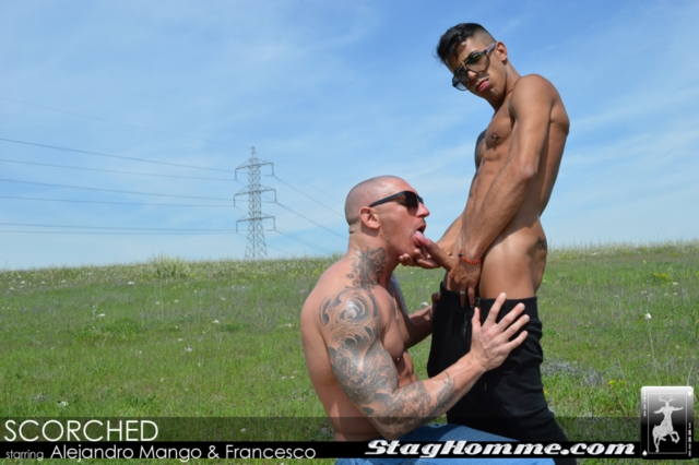 Francesco DMacho and Alejandro Mango Stag Homme gay porn stars fuck gay ass fucking gay asshole rimming tattoo muscle hunks 01 pics gallery tube video photo - Francesco D'Macho and Alejandro Mango