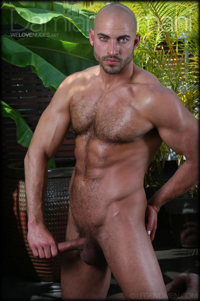 Damian armani men legend
