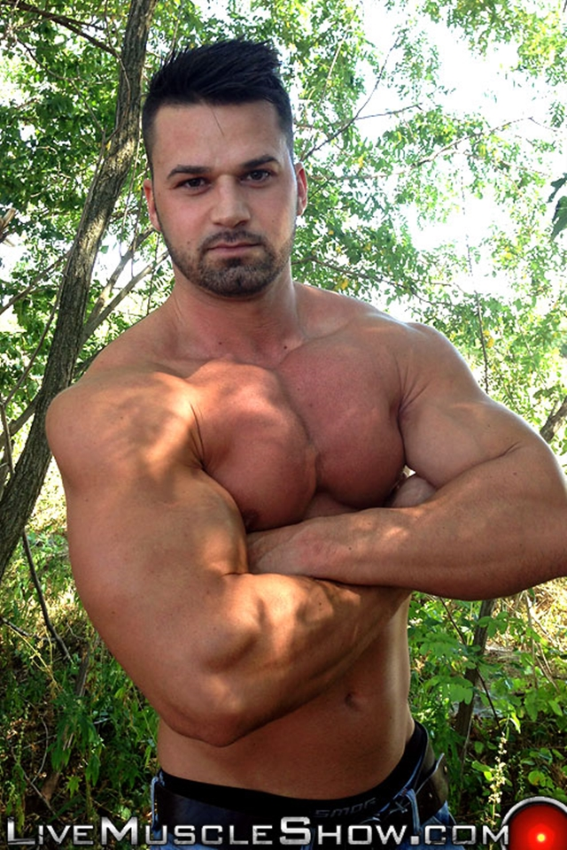 live muscle show  Clark Lewis