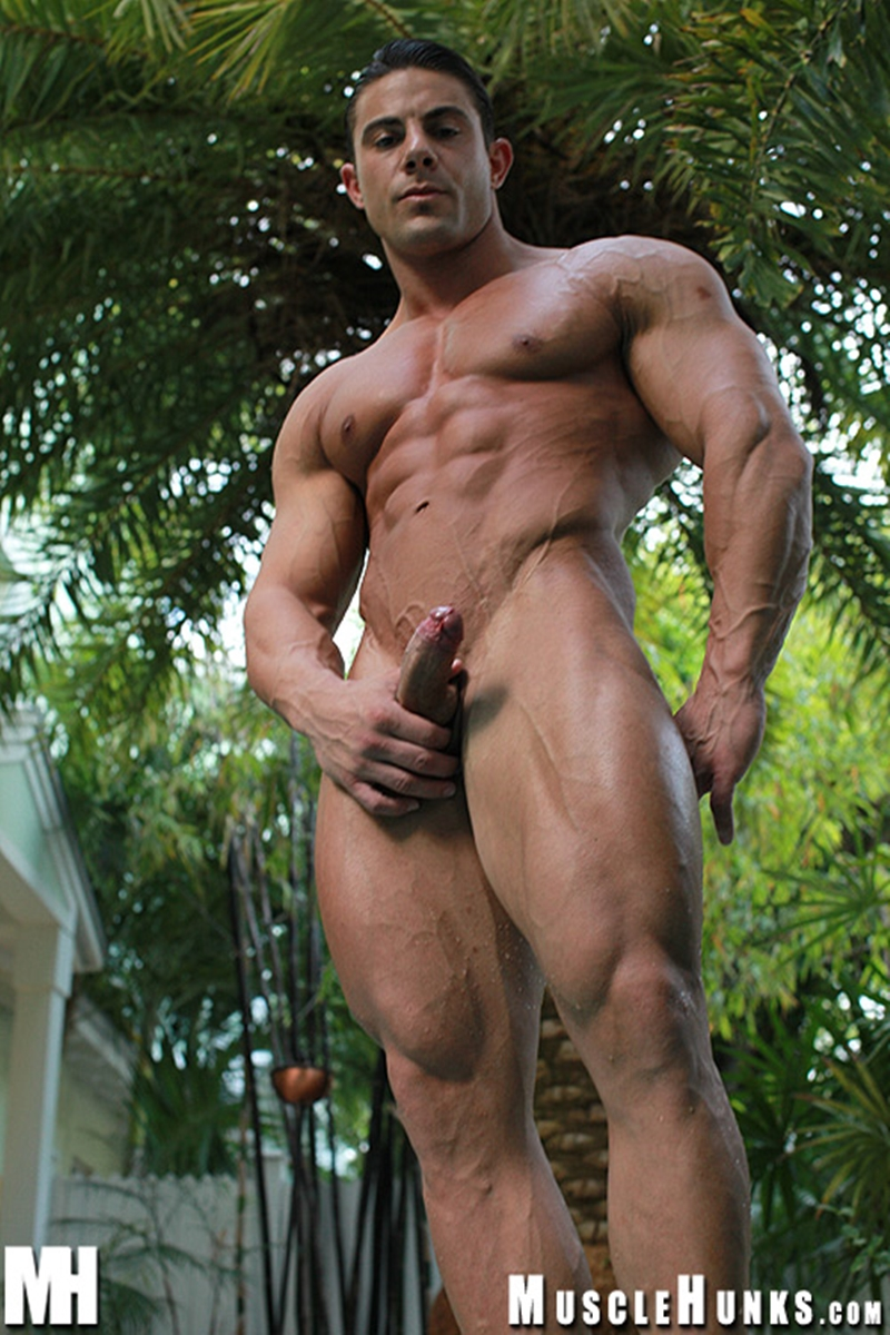 MuscleHunks-Massive-big-muscle-man-Rocco-Martin-naked-bodybuilder-ripped-chest-six-pack-abs-curved-dick-rock-hard-wanks-011-tube-download-torrent-gallery-sexpics-photo