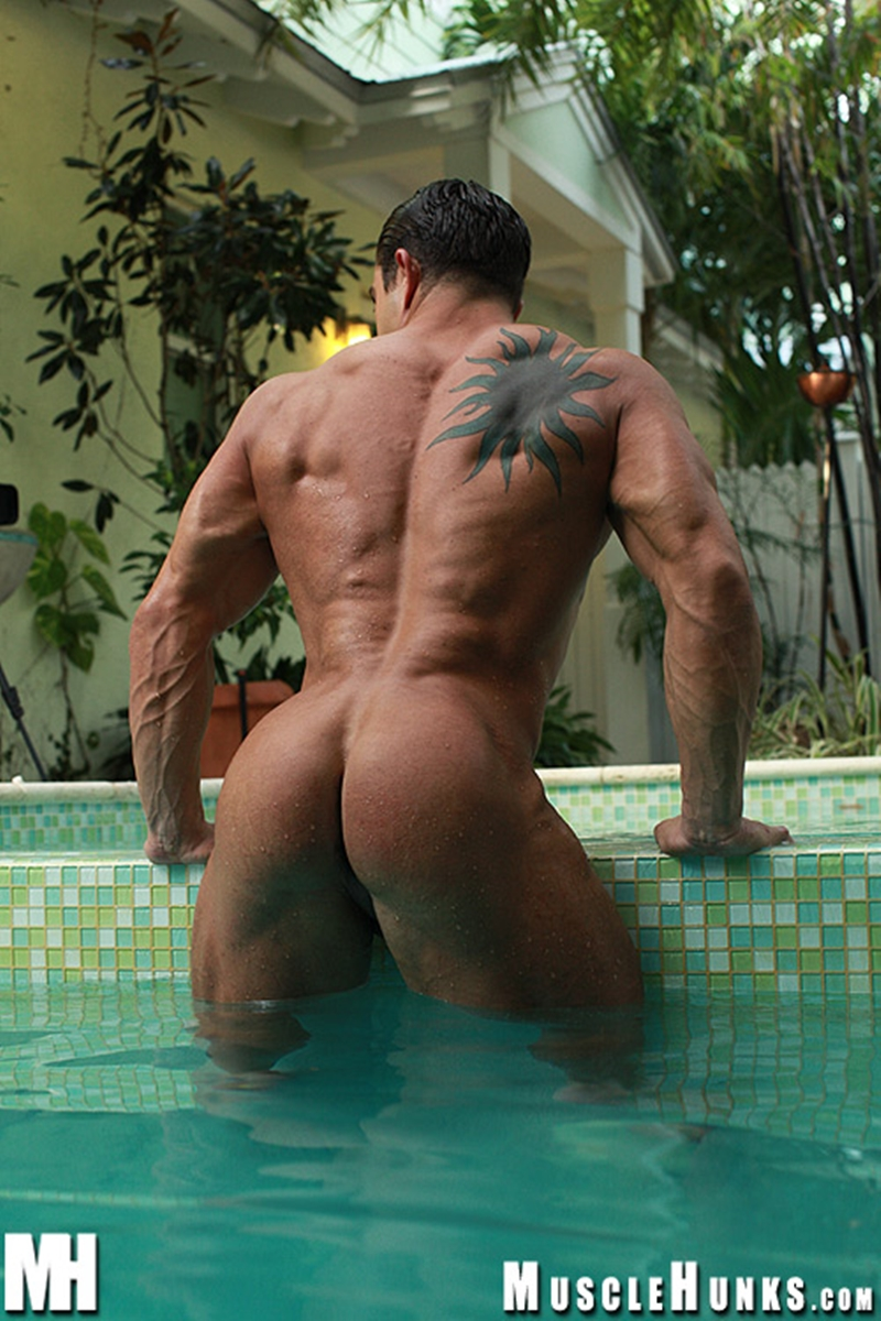 MuscleHunks-Massive-big-muscle-man-Rocco-Martin-naked-bodybuilder-ripped-chest-six-pack-abs-curved-dick-rock-hard-wanks-013-tube-download-torrent-gallery-sexpics-photo