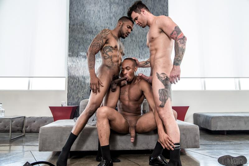 Noir Male bottom dudes Trent King and Beau Reed asses fucked ebony stud Aaron Reese 0 image gay porn - Noir Male bottom dudes Trent King and Beau Reed's asses fucked by ebony stud Aaron Reese